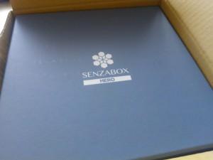 Senzabox logo